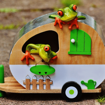 grenouille camping