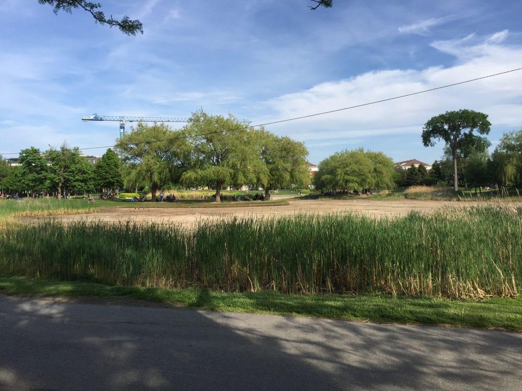 parc jarry étang vide