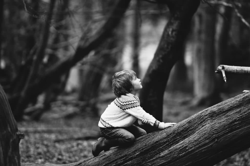 garçon arbre noir blanc
