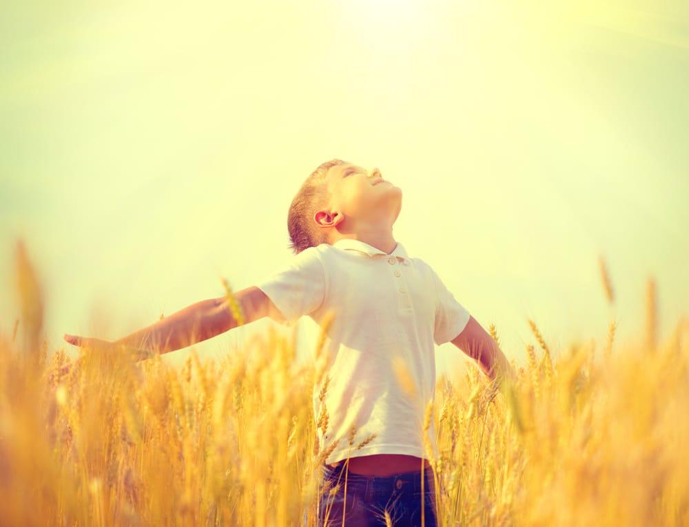 boy in a filed sunshine