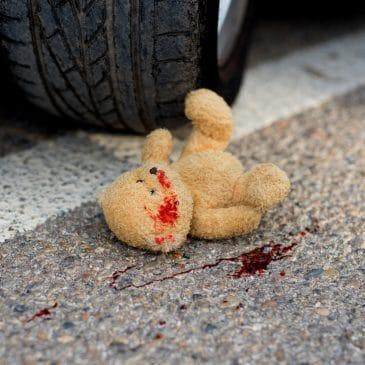 car crash with bear
