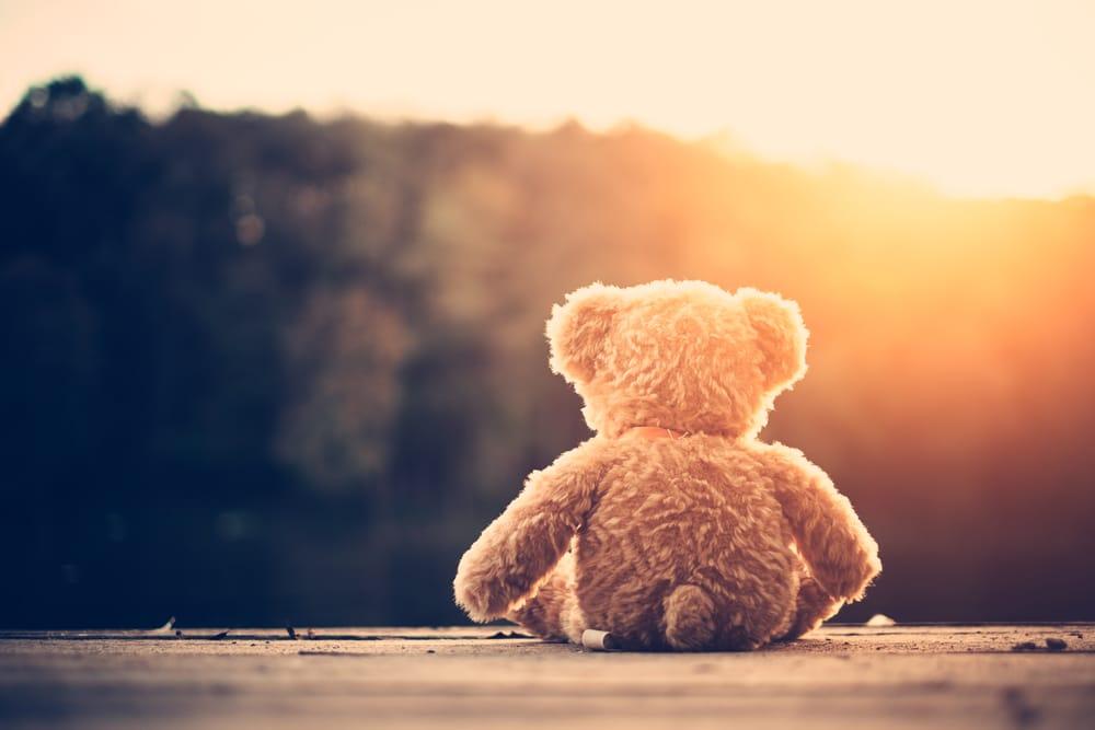 teddy bear sun