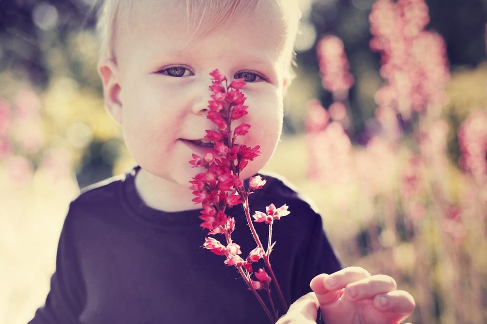 little kid in a field with flower