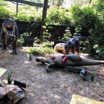 dinozoo