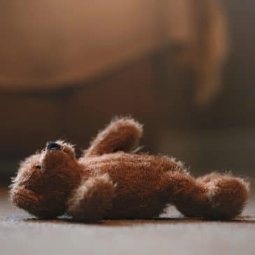 teddy bear alone