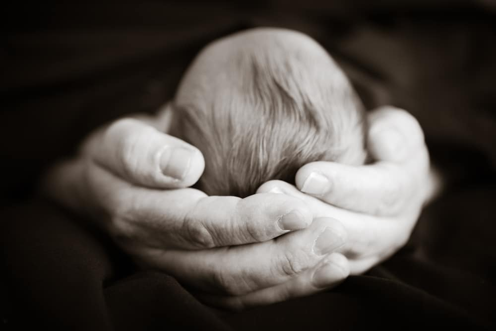 hands hold baby's head