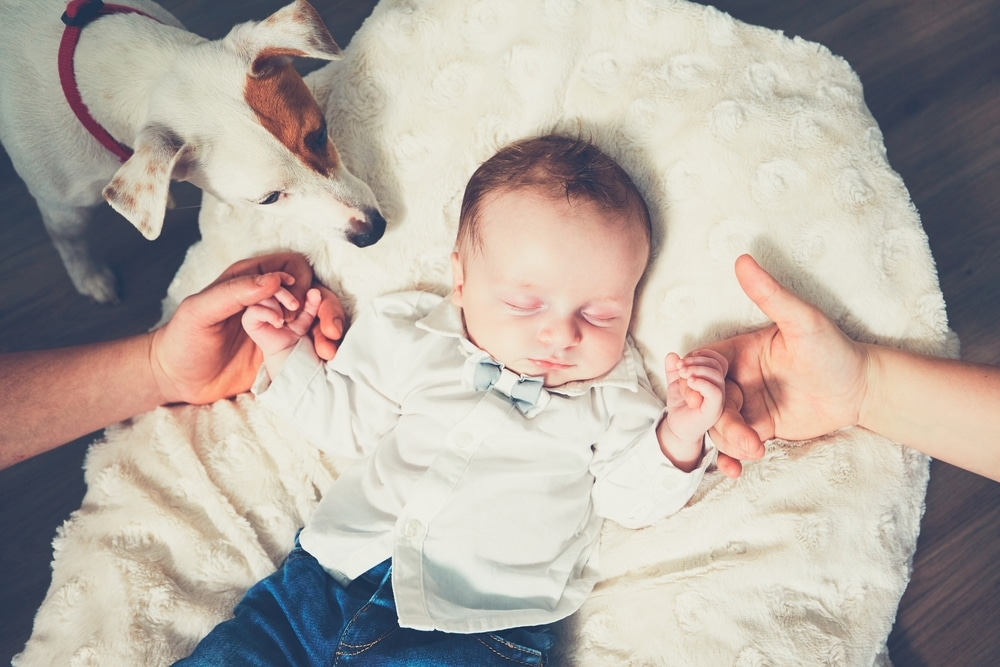 newborn with dog