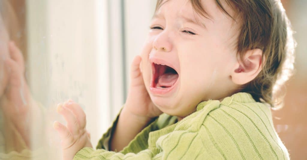 toddler cry in front of window