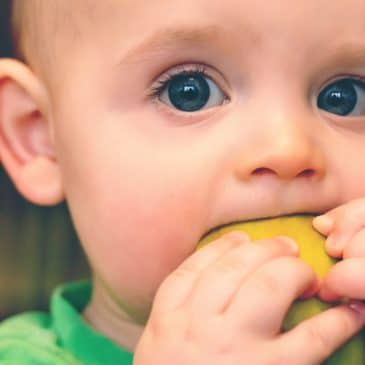 kid eat apple